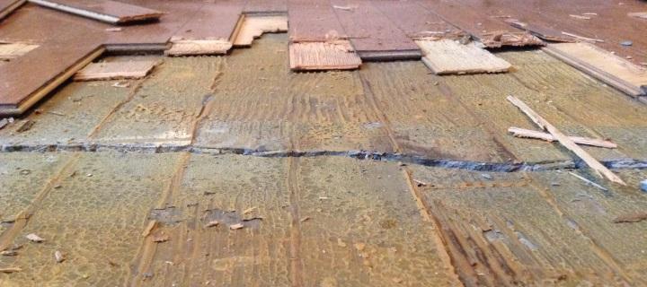 moldy floor trim